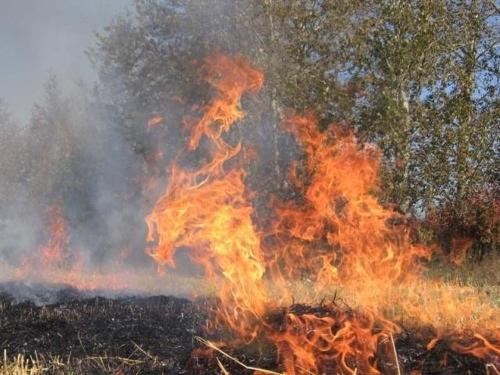 Чтобы лес не исчез. Праздничные дни для южноуральских пожарных выдались особенно горячими